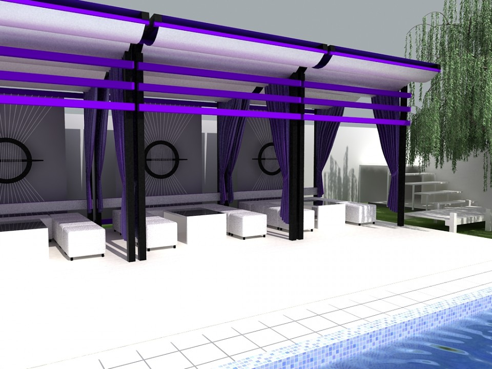 design piscina ziua 8