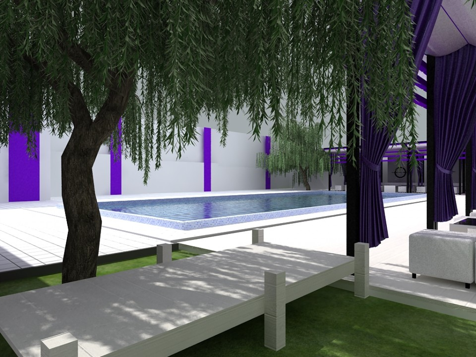 design piscina ziua 6
